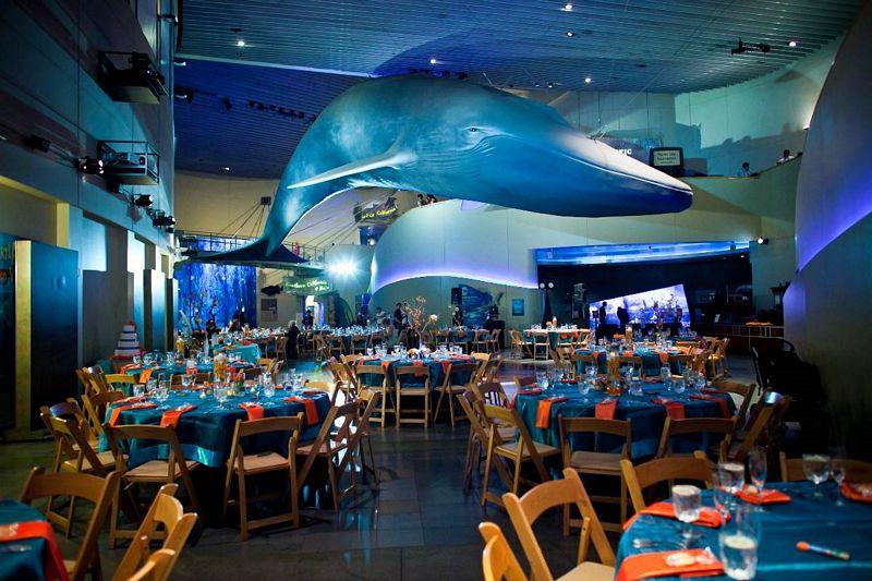 Aquarium Of The Pacific Pd Special Events